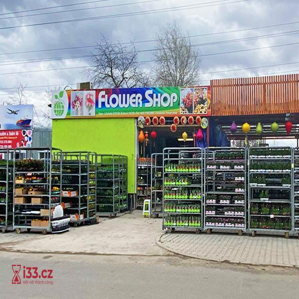 Flower Shop - Hoa tươi